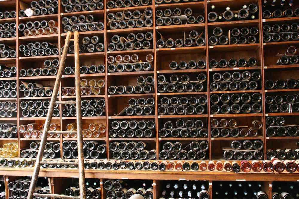 vaneau vin - dégustation2